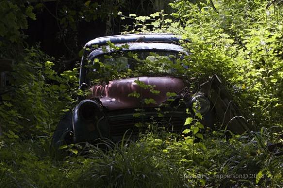 Car_EPV0070