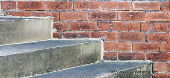 Steps_MG_3429