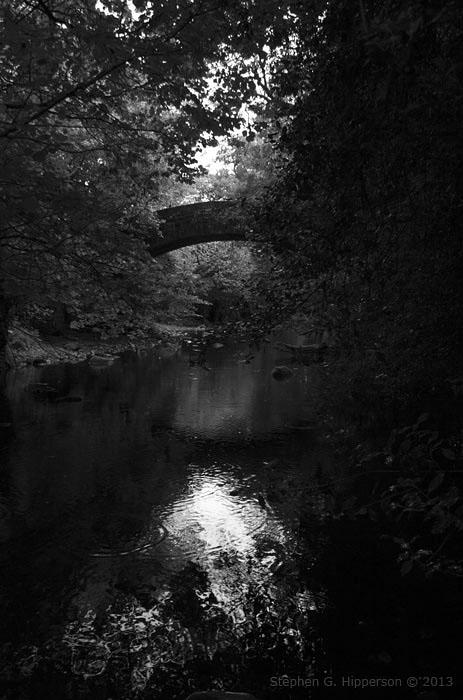 Bridge_MG_4377