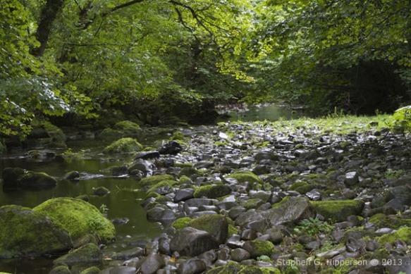 River_MG_4368