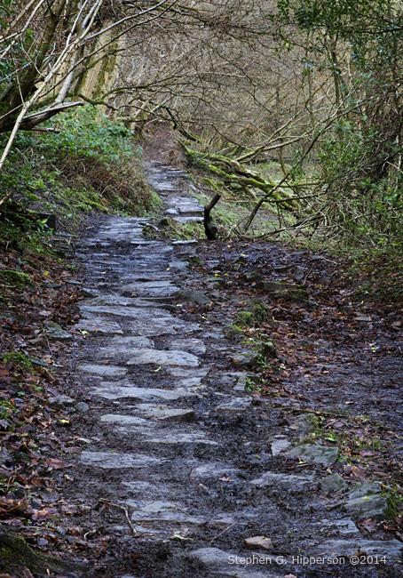 Path_MG_5752