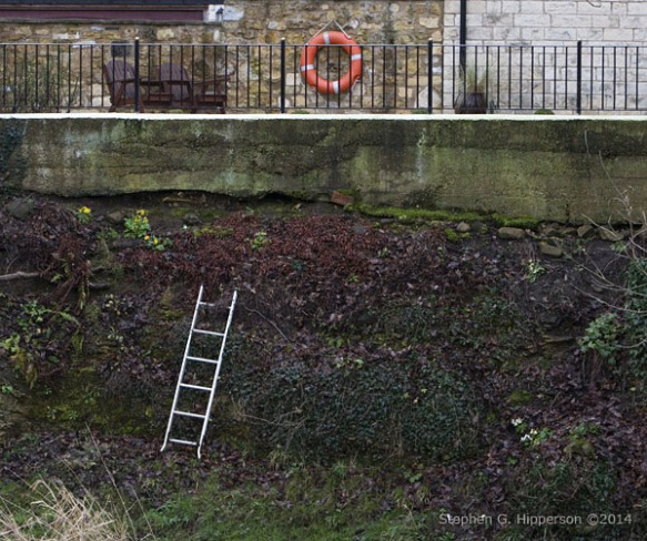ShortLadder_MG_5915