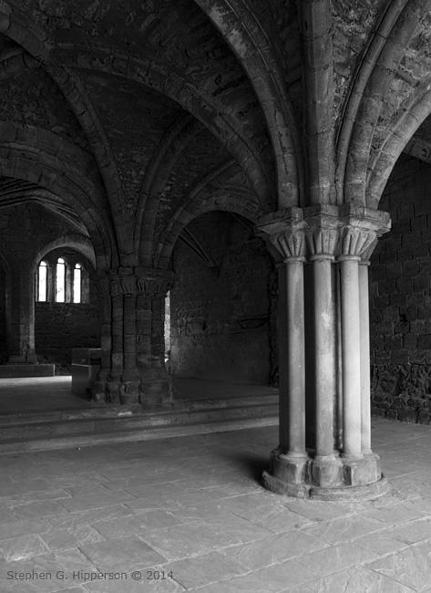 Internal Pillar Kirkstall Abbey
