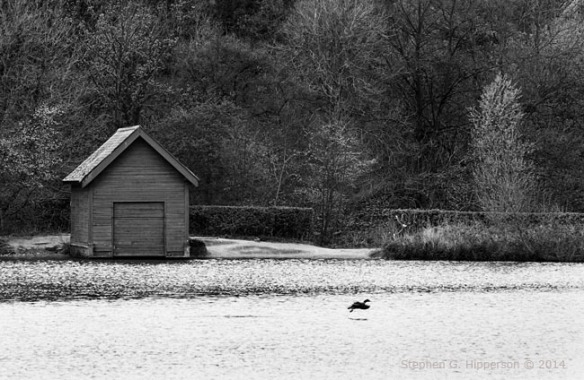 Boathouse_MG_7660