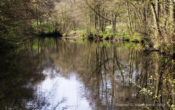 River_MG_7688