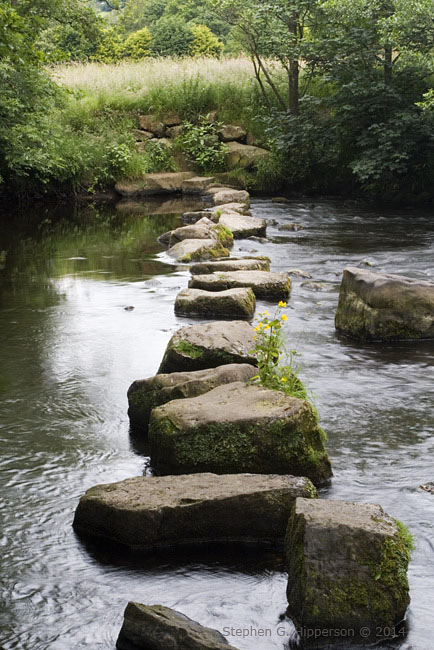 SteppingStones_MG_8793