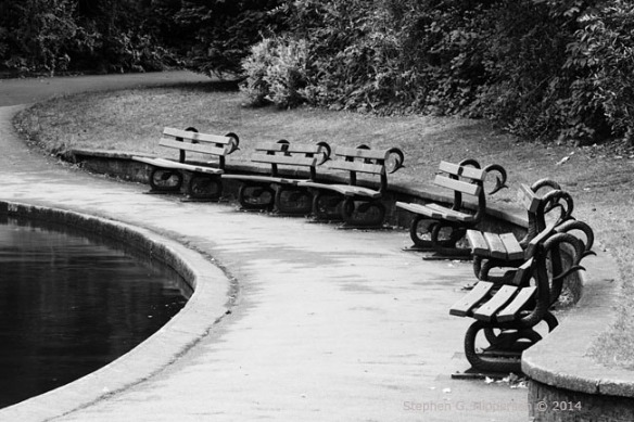 Benches_MG_8972