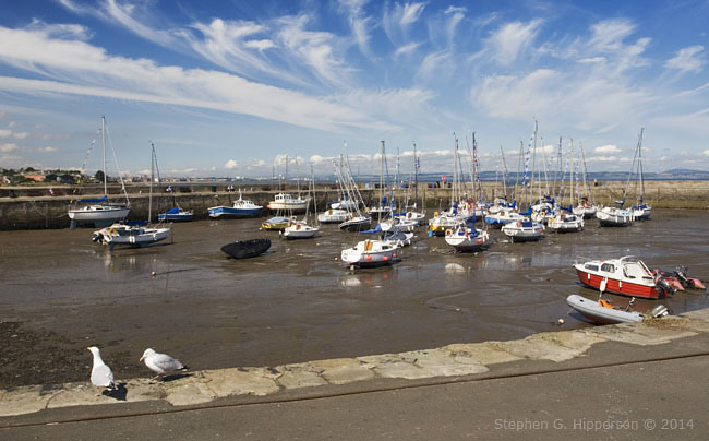 Harbour_MG_9086