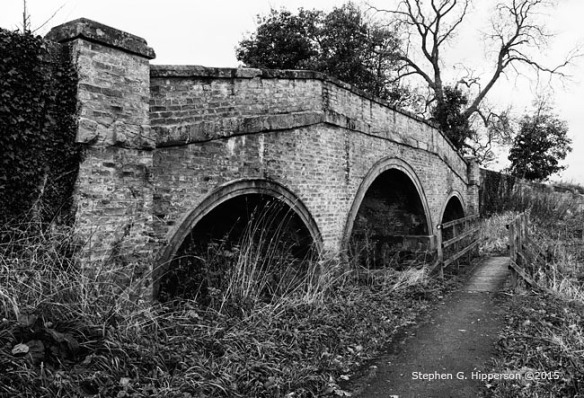 Bridge_MG_5139